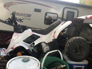 110cc | Find New ATVs & Quads for Sale Near Me in Alberta