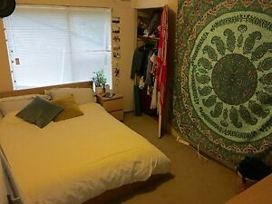 Cosy room available short term Manly Manly Area Preview