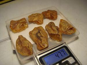 AMBER / raw baltic amber bernstein natural bursztyn baltycki genuine 琥珀 (e3815 - <span itemprop='availableAtOrFrom'>Bialystok, Polska</span> - AMBER / raw baltic amber bernstein natural bursztyn baltycki genuine 琥珀 (e3815 - Bialystok, Polska