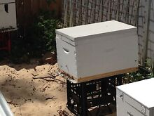 8 frame bee hive pick up north epping North Epping Hornsby Area Preview