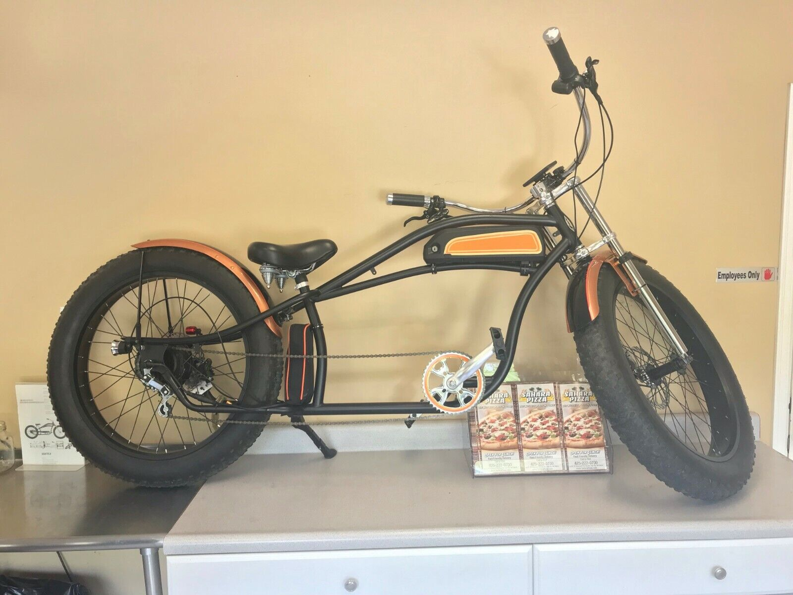 Micargi 26'' Bike Bicycle  Electric Fat Tire E Bike Cruiser (New - 2100 USD)