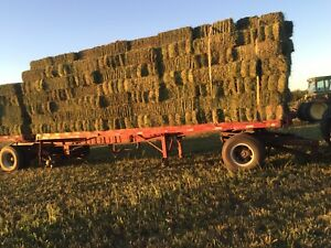 Alfalfa square bales for sale