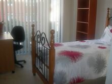 MAROUBRA JUNCTION - FLAT TO SHARE - A FURNISHED ROOM WITH BALCONY Maroubra Eastern Suburbs Preview