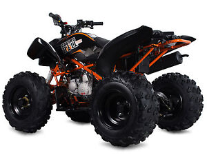 RAGING BULL 125cc ATV QUAD BIKE Off-Road Buggy Rocker Stomp Demon X Pit Bike