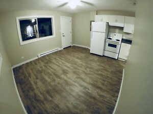 1 BEDROOM APARTMENT FULLY RENOVATED ROOMS AND KITCHEN!!