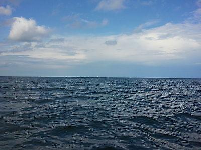 raphael-fishing