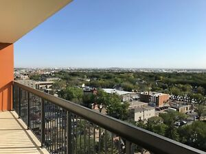12th Floor Downtown Apartment New Flooring! Avail Now