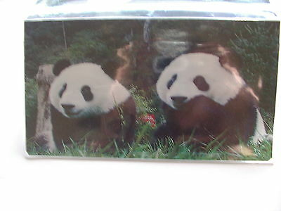 Two Panda Bears watching Vinyl Checkbook cover - Panda Checkbook Cover