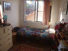 Furnished room in friendly Marrickville apartment, short term Marrickville Marrickville Area Preview