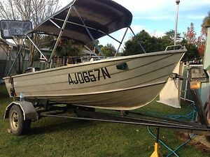 3.6m tinny with 20hp mercury motor Inverell Inverell Area Preview