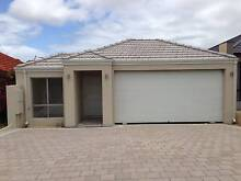 BRAND NEW 4 x 2 House in Yokine for Rent Yokine Stirling Area Preview