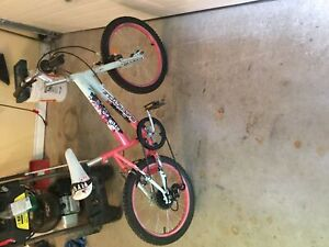 "Kids/Girls 5 speed  18"" super cycle bike"