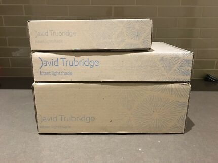 David Trubridge pendant lights x 3