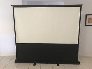 100 inch screen - revtek