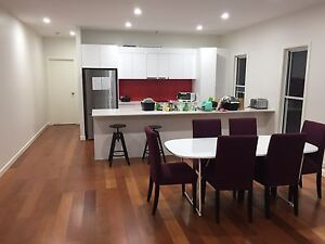 Beautiful and luxury single RmX2, near the GABBA. East Brisbane Brisbane South East Preview