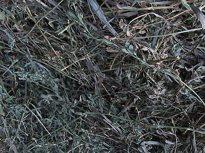 2 lbs.Alfalfa Grass Mix Hay new 2018 crop  Rabbit and other pets food feed for sale  West Point
