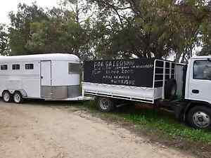 horse and stock transport Mariginiup Wanneroo Area Preview