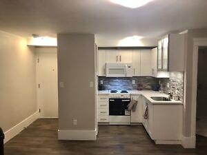 CENTRAL & NEWLY RENOVATED 1 BDRM