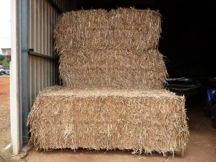 Forage sorghum hay for sale