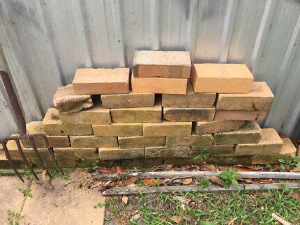 Bricks. Free