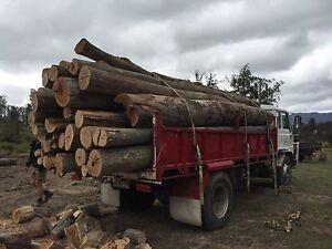 Firewood Kings Meadows Launceston Area Preview