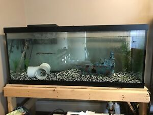 75 Gallon fish tank for sale