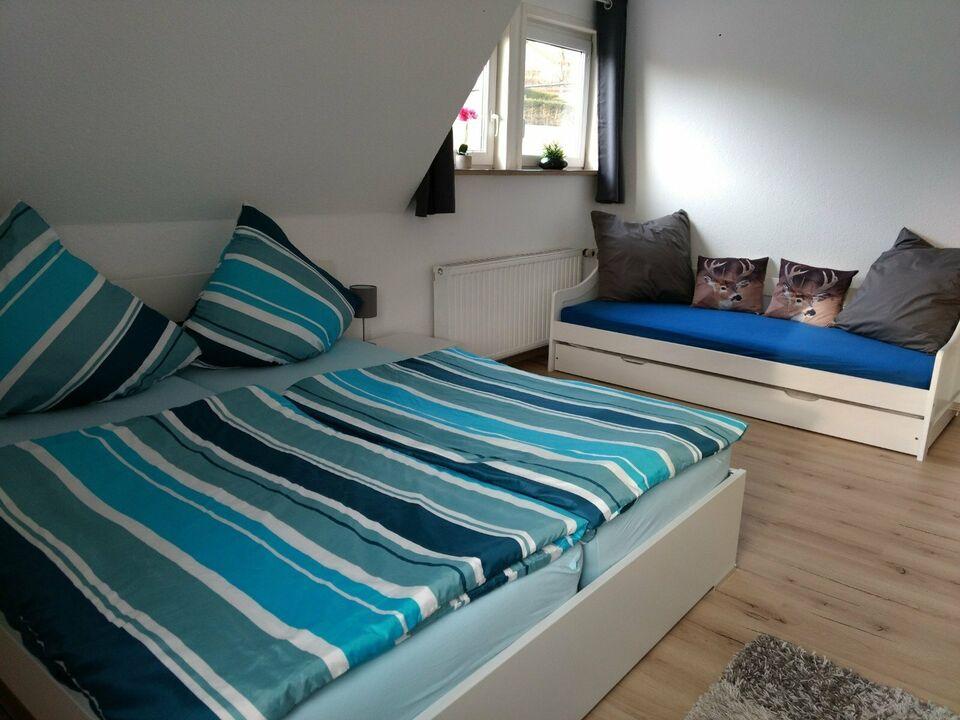 2-10 Personen FEWO Urlaub mit Hund Sauerland Diemelsee in Marsberg