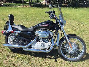 2009 Harley Davidson 883 Sportster Custom.