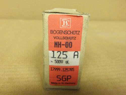 NEW BOGENSCHUTZ NH-00 SGP 125 AMP 500V FUSE NH00