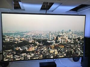 "125"" Fixed Projector Screen"