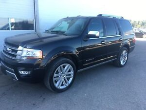 2016 Ford Expedition Platinum-22 Alloys, Heated/Vented Seats