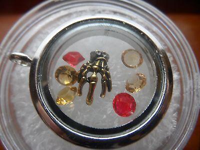 Skeleton Hand Skull Floating Charm Living Memory Owl Glass Locket 7p Halloween