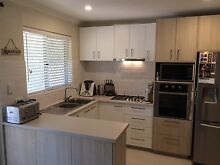 Newly renovated 2 bedroom, 1 bathroom unit for rent in Yokine Yokine Stirling Area Preview