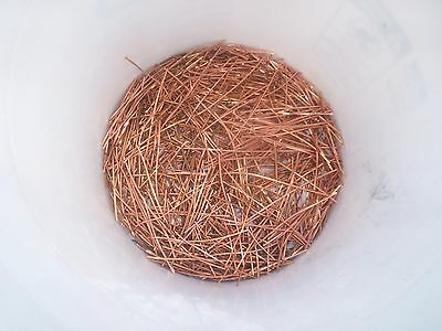 1 Pound Clean Bare Bright Scrap Copper Wire 101214 Awg Shorts Crafts Hobby