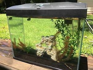 Blue Planet Fish Tank 50 L w/ bubbler and accesories Shenton Park Nedlands Area Preview