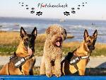 pfoetchencheck-shop