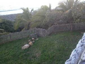 WANTED Labourer for yard clean up on going work Dolphin Heads Mackay City Preview