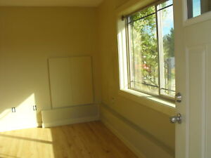Sunny Suite for Rent
