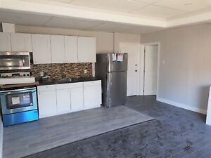 Newly-Renovated 1 Bedroom in Downtown Hamilton