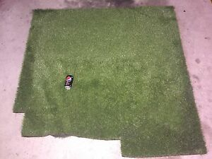 AstroTurf Offcut Abbotsford Canada Bay Area Preview
