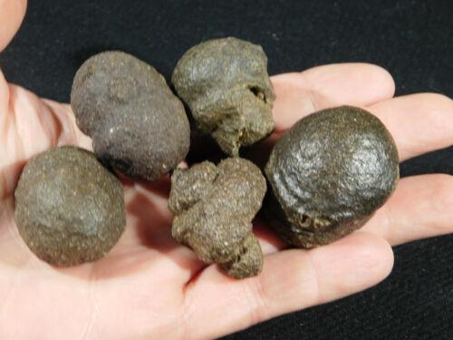 Lot of FIVE! Natural Moqui Marbles or Shaman Stones Utah 174gr