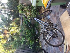 Ladies radius bike Mackay Mackay City Preview