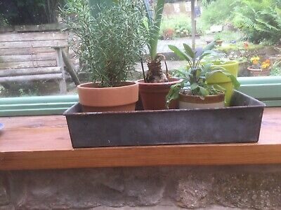 Vintage Quirky Industrial Weathered Galvanised Planter Sheffield Steel Works