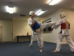 Taekwondo class Northbridge Perth City Area Preview