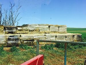 Hay for sale Clare Clare Area Preview