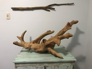 Driftwood Sculpture (...and more)