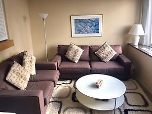 MOVING SALES!!! Living room couches + FREE rug
