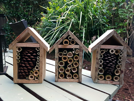 Bee Hives For Sale In Lismore Region Nsw Home Garden Gumtree