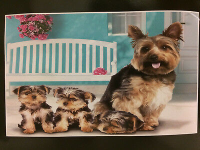 Yorkie Dogs Puppies Pup Dog Front Porch Super Soft Fleece Throw Blanket NEW