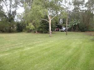 GRASSY PONIE HORSE PADDOCK FOR LEASE Medowie Port Stephens Area Preview